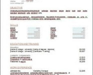 Contoh Resume Memohon Jawatan Business Development Manager Bagi Sesebuah Syarikat