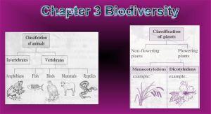 Nota Padat Sains Tingkatan 2 Yang Sangat Power Bab 3 Sains Tingkatan 2