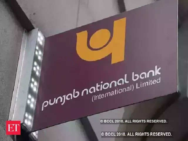 much of the record earnings will come from a planned sale of pnb s stake in its housing finance unit