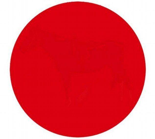 1 apakah anda bisa melihat sesuatu dalam lingkaran merah ini