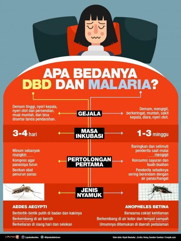 contoh teka teki nyamuk yang bernilai untuk murid of teka teki nyamuk jpg