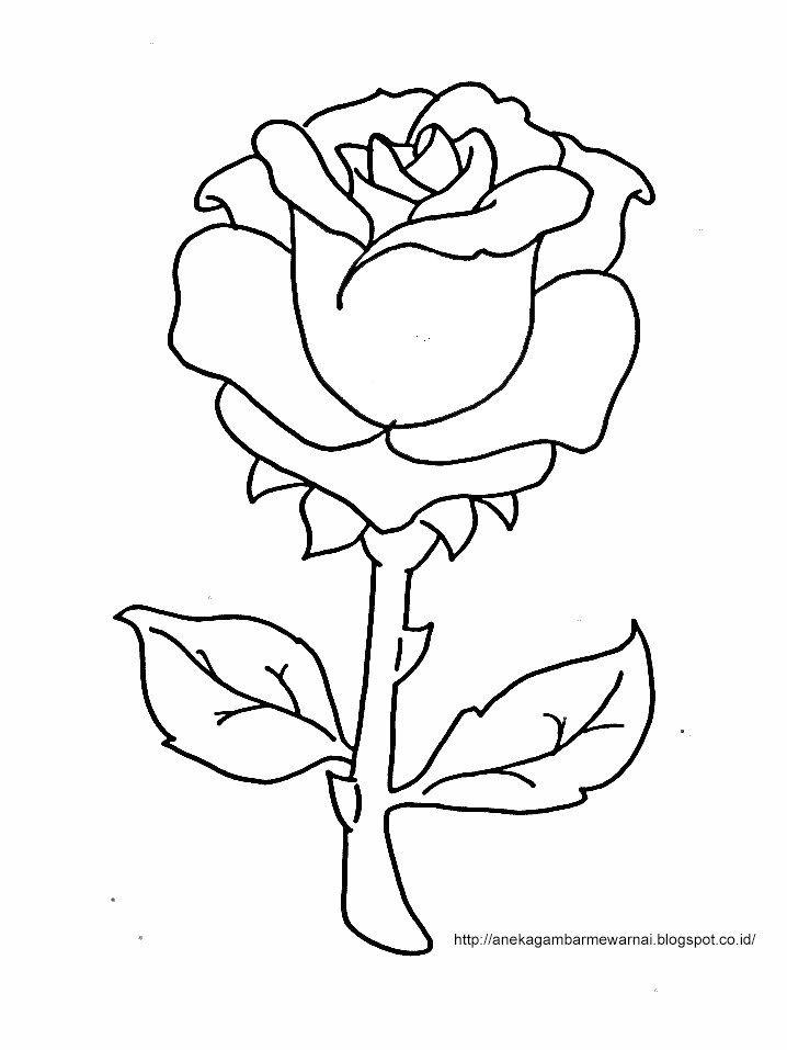 gambar mewarnai bunga mawar untuk anak paud dan tk