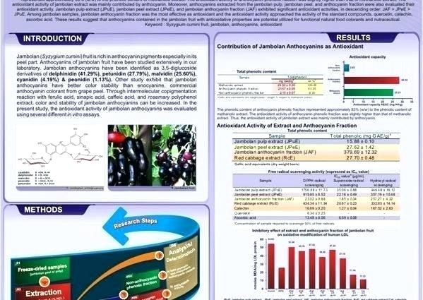 standard academic poster size prof in collaboration with rd templates design