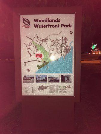 woodlands waterfront park photo