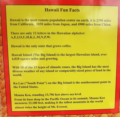 kings view cafe hawai i fun facts poster outside the restaurant